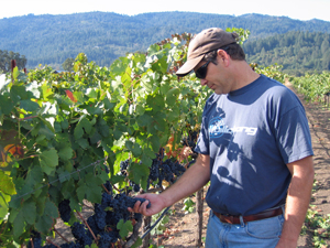 August Briggs wines