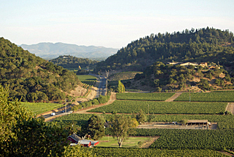 The Stags Leap District Appellation Collection