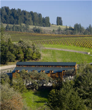 Freestone Vineyards by Joseph Phelps