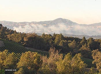 Fog rolling in over Russian River Valley vineyards