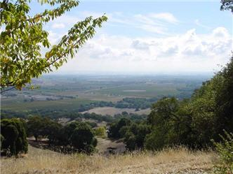 Suisun Valley AVA in the southeast part of the North Coast AVA