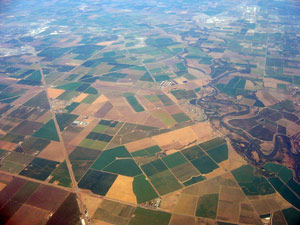 Central Valley and premium grapes aerial shot