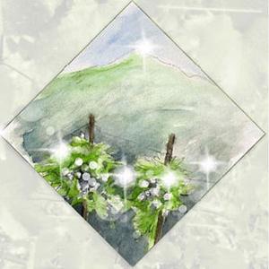 Diamond Mountain District profile