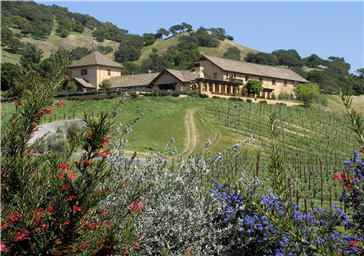 Nicholson Ranch in Sonoma Valley
