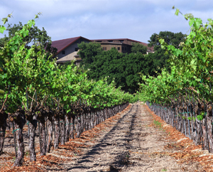 Firestone Vineyards in Santa Ynez Valley gets sold.