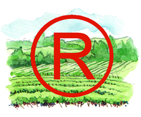 Trademarking a vineyard to protect its name and reputation.